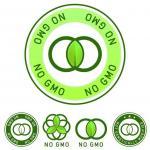 Feminized & Autoflowering Marijuana: A Monsanto GMO Plot to Eliminate Natural Marijuana Genetics?