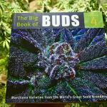 Discover Classic Marijuana Strains