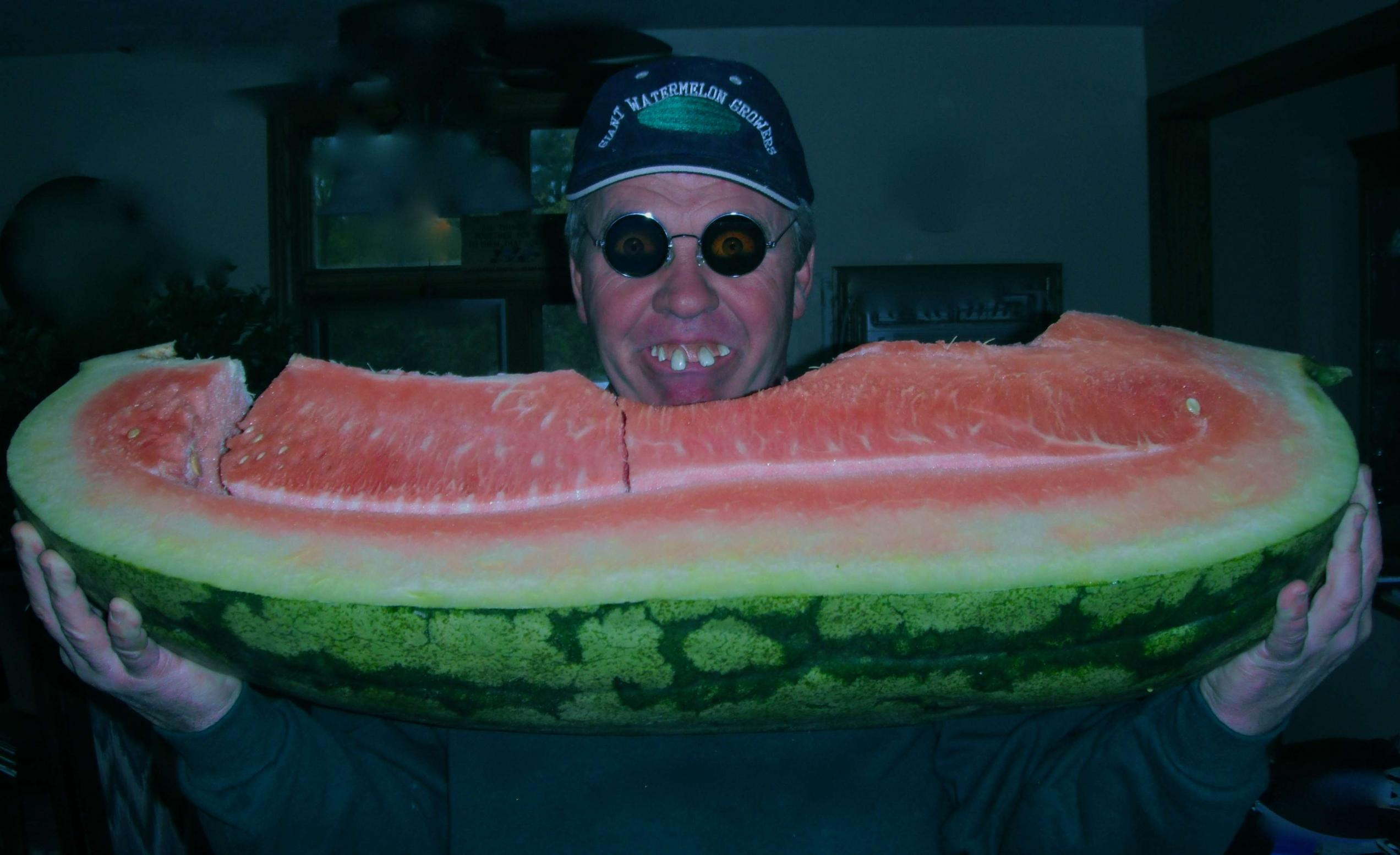 elvis - giant watermelon