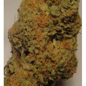 medical cannabis strain bluedream