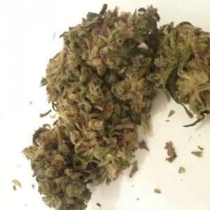 Medical cannabis strain - Charlie Sheen