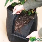 Fabric Planting Containers For Medical Marijuana – GeoPot Transplanter