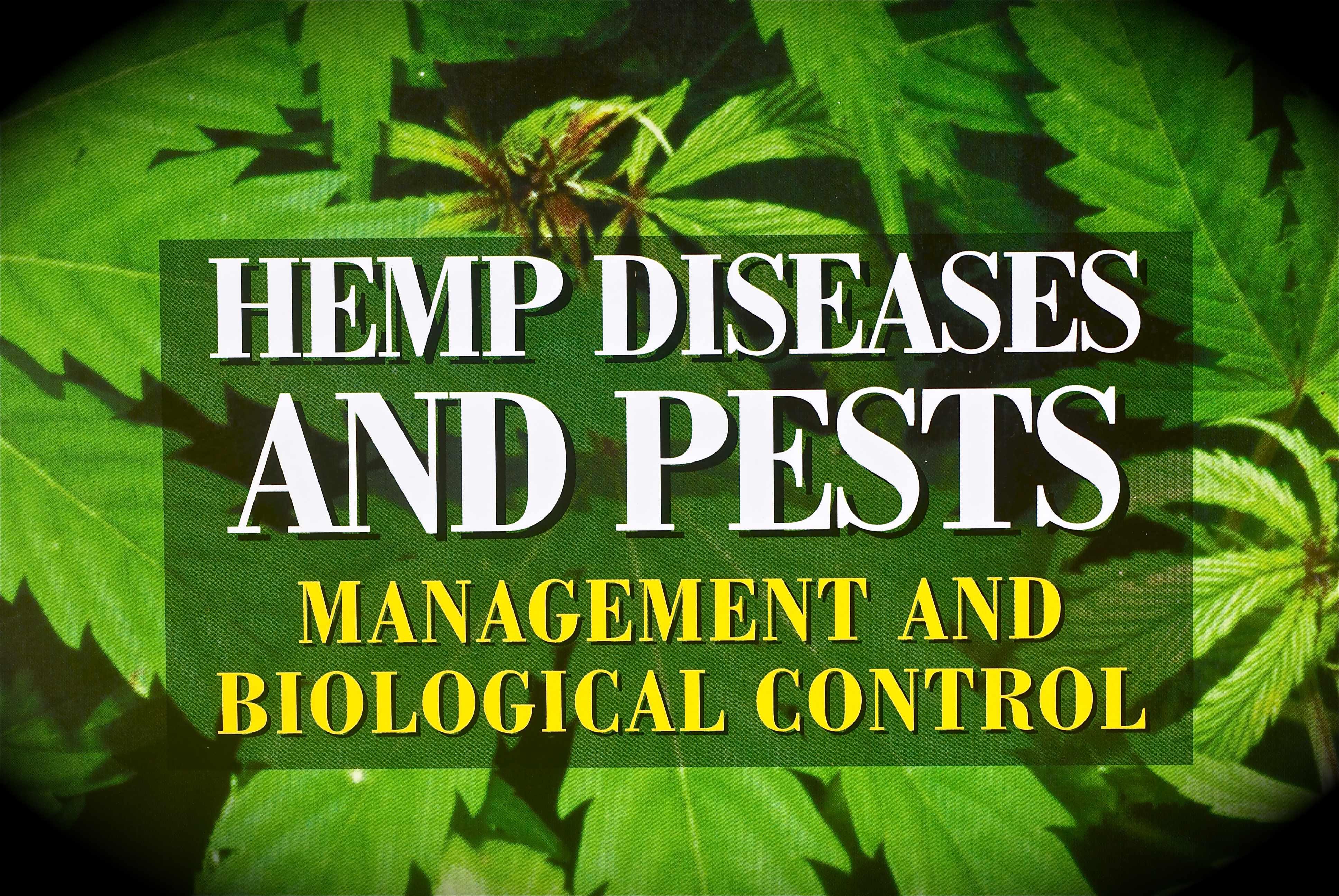 hemp diseases and pests