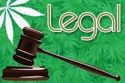 legal_0