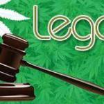 Selecting juries in cannabis cases, and winning at trial