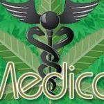 medical marijuana 0