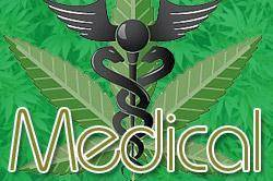 the question of whether marijuana is a new medicine Buy hash oil online cannabis 21-5-2013 do you think the current federal prohibition on marijuana is good public policy the question of whether marijuana is a new medicine 20-7-2014 most.