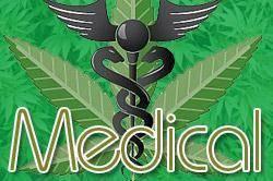 medical_2