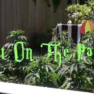 pot on the patio