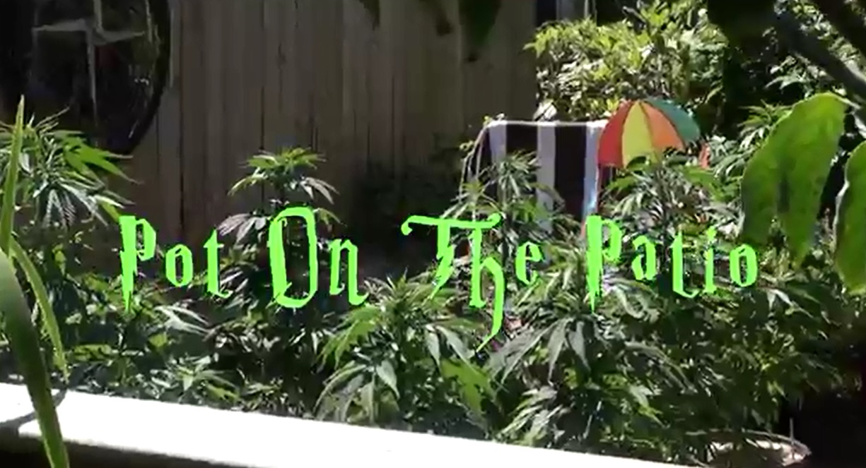 pot_on_the_patio_2
