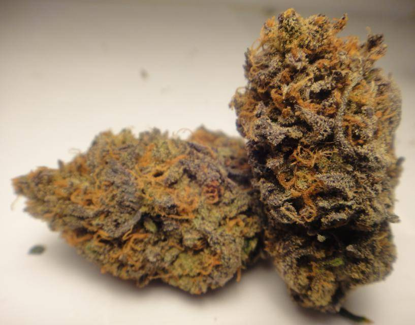 purple_cherry_pie