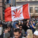Canada flag with cannabis