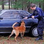 US Supreme Court Declares Use of Drug-Sniffing Dogs Unlawful!