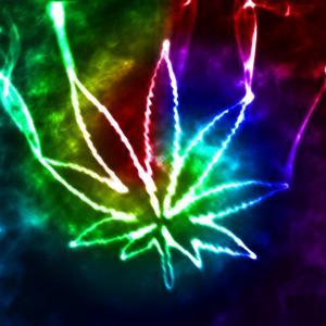 colourful marijuana leaf